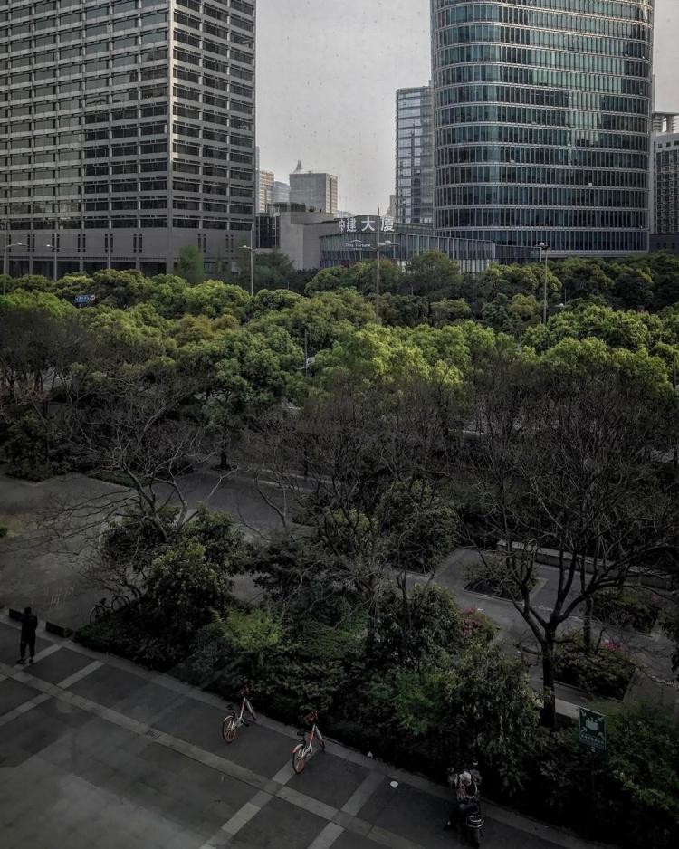 Shanghai Day 4
